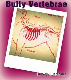 Spinal Vertebral Abnormalities in Bulldogs Butterfly vertebrae